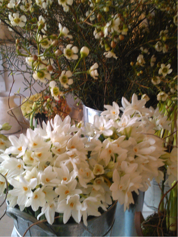 floral design courses