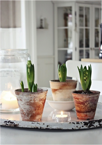 1-Jan-flower-pots